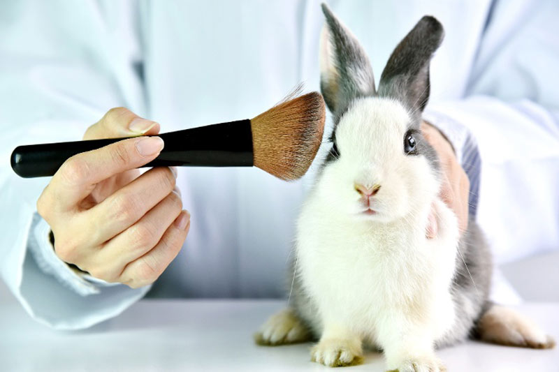 New Survey from Perfect365 Reveals 36% of Women Prefer to Purchase Cruelty-Free Beauty
